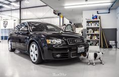 Once Jack completes his initial inspection, we'll get started on an Interior Deluxe for this Audi S4!
