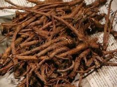 Remedies For Water Retention Dandelion root from 2 year old plants. Root can be dried for later use. - Discover the wonderful health benefits of dandelion root. Used for years as a body detoxifier, learn how to make dandelion root coffee. Natural Home Remedies, Natural Healing, Herbal Remedies, Shibori, Dandelion Benefits, Dandelion Root Tea, Dandelion Plant, Dieta Detox, Korn