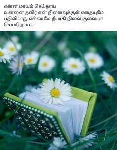 Love Feeling Images, Missing Someone Quotes, Tamil Kavithaigal, True Quotes, Picture Quotes, Romantic, Feelings, Beads, My Love