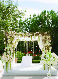 1000 Images About Wedding Arches On Pinterest Wedding