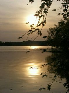 Springfield Lake. Springfield Mo.