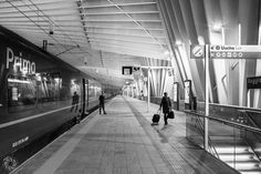 The Lonely Passenger (Photo From Reggio Emilia AV Mediopadana Station)