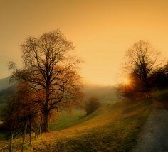 fall*  -- Bohemian Wornest-France