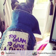 """""""TO GLAM TO GIVE A DAMN""""✨ Pebbles rocking our denim dog vest with her own custom patch by super talented mum & artist @eviekemp  we are in love ! ✨✨✨✨✨✨✨✨✨✨✨ #toocoolforschool #eviekemp #dogue #dogjacket #dogclothes #dogsofinstagram #dogsofmelbourne #melbournefashion #pethaus  #weeklyfluff #instagood #instadog #insta_dog #pethauspack"""