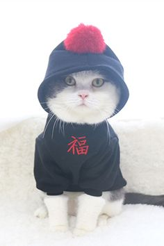 Teamlala 可愛いポンポンニャンタ・ワンちゃん秋冬パーカー洋服 [福]文字飾りブラック猫犬 ペットウェア