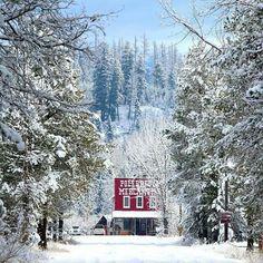 Polebridge, Montana / Winter