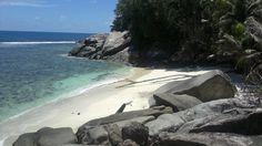Seychellerna. Moyenne Island. Små, vackra och lugna stränder att njuta på.