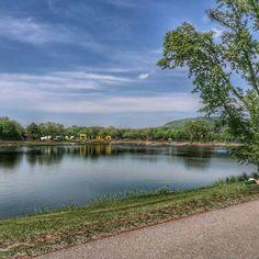 Wir präsentieren euch hier die schönsten Teiche und Seen rund um Wien, die euch diesen herrlichen Tag versüßen. Kühlt euch gut ab! Seen, Vienna, River, Outdoor, Ponds, Alone, Road Trip Destinations, Round Round, Destinations
