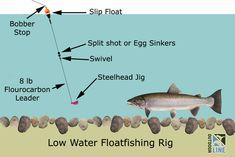 Low Water Winter Steelhead | The Outdoor Line Blog