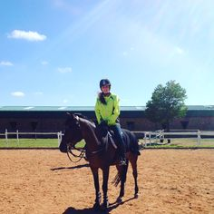 In traininng Riding Helmets, Horses, Hats, Animals, Animais, Animales, Hat, Animaux, Animal