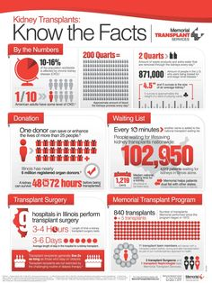Memorial Health | Live Well Online Magazine » Blog Archive » Kidney Transplants: Know the Facts Infographic