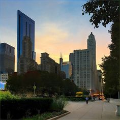 living evening to evening is pretty fun job, thought to share from Sunday evening :) #Sunset #Downtown #MilleniumPark #Chicago #SweetNovember #Pretty #Autumn #Colors #Evening