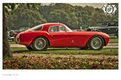 Chantilly 2014 - Concours (4)
