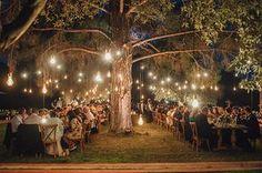 Enchanting olive grove wedding   Jasmine & David - Love4Wed