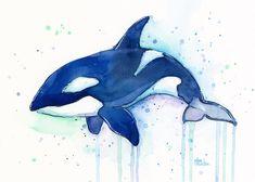Orca Wale Aquarell Art Print - perfekt für Kinderzimmer! Schöner großer Schwertwal Aquarellmalerei, Kinderzimmer Dekor. Giclee Kunstdruck/Poster meiner original Aquarell Malerei ein Schwertwal (Orca).  -Hochwertige archival Pigment-Tinten -4 x 6, 5 x 7, 8 x 10, 8.5 x 11 druckt: auf 100 % Baumwolle-Fine Art-Papier (64lb) -13 x 19, 12 x 16, 11 x 14 druckt: auf 13 x 19 Epson Aquarellpapier -Standardrahmen passt in -Randlos, sofern nicht anders angegeben  Zuschneiden des Bildes variiert leicht…