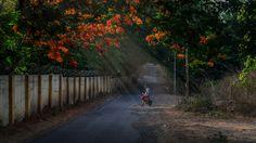 Morning Bliss by Omkar Joshi on 500px