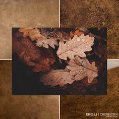 Autumn is coming 🍁 Sibu, Design Products, Autumn, Painting, Art, Art Background, Fall Season, Painting Art, Kunst