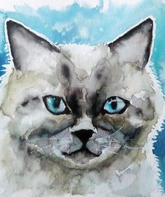 Tuto aquarelle d'un chat disponible dans le Club Aquarelle  #aquarelle #peinture Watercolor, Animals, Club, Pen And Wash, Nature, Sketches, Cats, Art, Budget