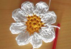 dainty daisy pattern