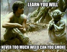 Never too much weed can you smoke, proven fact