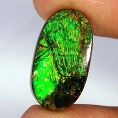 100% Natural Ammolite Multi Color Oval Cabochon Exclusive Rare Gemstone 13.50Cts #Handmade