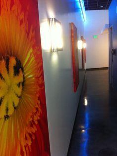 Modern Commercial Interior Design, by David Lyon. Vein Care Institute, Modern Medical Facility, Belmar, Colorado.   http://www.designforchange.tv or  http://www.facebook.com/groups/234742429920610/