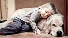 golden retrievers are so comfy- man's best friend Dogs And Kids, Animals For Kids, I Love Dogs, Animals And Pets, Puppy Love, Baby Animals, Dogs And Puppies, Cute Animals, Doggies