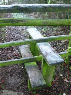 I wish I had a fence so that I could have my own stile to look at!