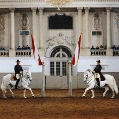 On June 26th, 2015 the Spanish Riding School of Vienna, famous for its Lipizzaner horses, will celebrate its 450th anniversary.  Behold its beauty.