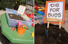 """Insect themed party game - """"dig for bugs"""" can use tubs or sensory table if not outdoors."""