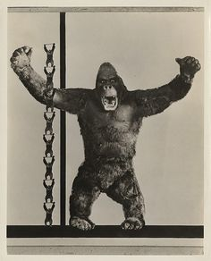 They used this for so many early publicity shots. My favorite Kong puppet by far.