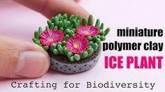 O futuro só depende de você! : Ice Plant Carpobrotus edulis // Invasive Crafted S. Polymer Clay Miniatures, Polymer Clay Projects, Diy Clay, Acrylic Tutorials, Clay Tutorials, Polymer Clay Flowers, Polymer Clay Beads, Tutorial Diy, Plant Crafts