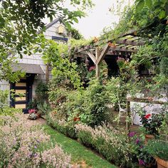 Start with an inviting pergola--add honeysucke, wisteria-- beautiful scents