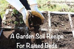 Growing Real Food Is Really Quite Easy! It Starts with Good Soil! Here is A Garden Soil Recipe For Raised Beds | GrowingRealFood.com