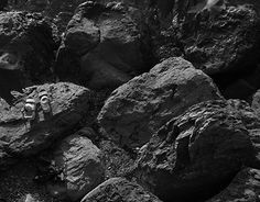 "Check out new work on my @Behance portfolio: ""Suya"" http://on.be.net/1G9aY98"