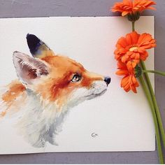 Cute watercolor art a r t watercolor art, watercolor paintin Watercolor Art Paintings, Watercolor Animals, Animal Paintings, Animal Drawings, Fox Painting, Painting & Drawing, Fox Drawing, Fox Illustration, Fox Art