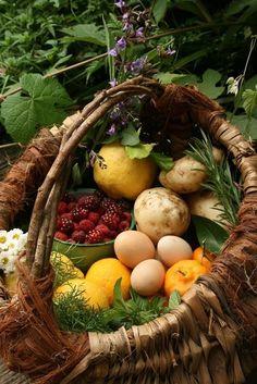 Cultivar mis vejetales y recoger los huevos de las gallinas, es algo que jamas imagine que te diera tanto placer.