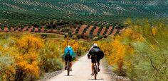 Proyecto en marcha para seguir la de Vía Verde del Segura entre Arrojo del Ojanco y Beas