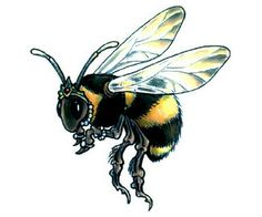 Queen Bee tattoo design by Gail Somers — future ink for me!