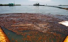 Louisiana's coastal restoration program could get $8.7 billion overmore than a decadeunder a settlement of BPoil spill claims announced Thursday (July 2), the largest cash infusion ever for the state's gargantuan restoration efforts,officials said. Details of the complex settlement will...