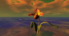 https://flic.kr/p/ZCDrLW | The Orchids of Binemust-0004 | Binemust, by Bine Rodenberg maps.secondlife.com/secondlife/Binemust/132/156/717