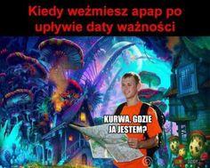 Very Funny Memes, Wtf Funny, Funny Lyrics, Polish Memes, Weekend Humor, Funny Mems, Dark Memes, Best Memes, True Stories