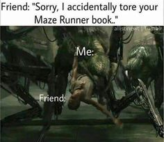 Oh yeah, somebody would be dead for sure. Especially my Maze Runner books. I'd probably be banishing them into the maze in my head Maze Runner Funny, Maze Runner The Scorch, Maze Runner Movie, Maze Runner Trilogy, Maze Runner Series, The Scorch Trials, Book Memes, Any Book, Dylan O'brien