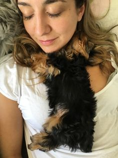Snuggling with my sister ❤️ Tiny Puppies, Bulldog Puppies, Cute Puppies, Cute Little Things, Cute Little Animals, Baby Animals, York Dog, Yorky, Silky Terrier