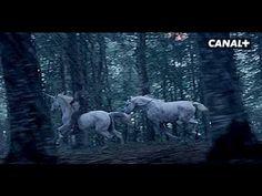 Les Licornes - Nouvelle pub CANAL+