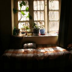 Self Architecture: Photo Window View, Through The Window, Morning Light, Light And Shadow, Oeuvre D'art, My Room, Future House, Sweet Home, Relax