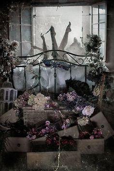 Kisten Mitchel, flores, objetos do cotidiano e uma pitada de humor