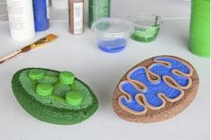 examples of plant cell projects / how to make a model of a plant cell with paper / animal cell model in a shoebox / animal cell model shoebox Plant Cell Project Models, 3d Animal Cell Project, 3d Animal Cell Model, Plant Cell Model, Biology Projects, School Projects, Science Projects, School Ideas, School Tips