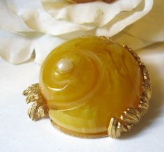 Vintage Cadoro Butterscotch Swirled Bakelite Nautilus Sea Shell Brooch