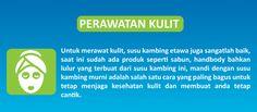 Susu Kambing Etawa Plus Propolis